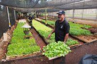 有機農業をすすめる日系人オルガさんの農園訪問