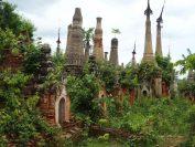 草むした中にある古い仏塔(インディン遺跡)