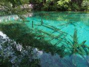 九寨溝は大小100の湖沼が様々な色合いを見せます