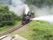 今は珍しいトイトレイン(小火車)。まだ生活の足として使われています。